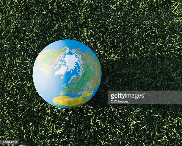 Globe on grass outdoors