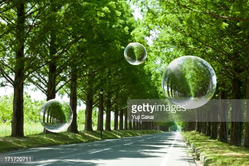 globe tree on women hand  with fresh green Avenue