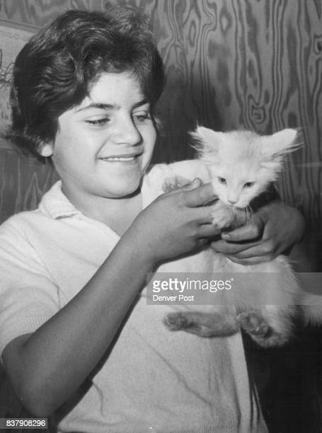 Gloria Leyba and her Kitten Snowball Denver girl holds her pet after joyful reunion at animal hospital Credit Denver Post