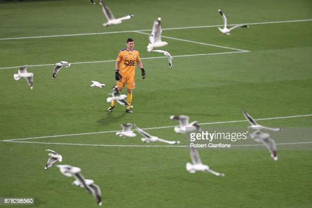Glory goalkeeper Liam Reddy looks on during the round eight ALeague match between Melbourne City and Perth Glory at AAMI Park on November 24 2017 in...