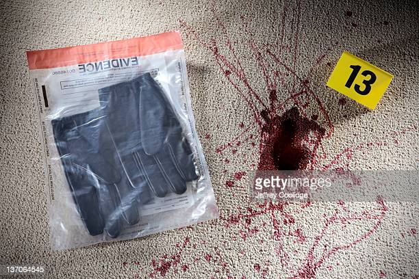 Gloves in Evidence Bag