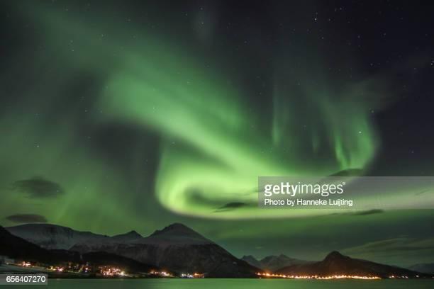 A glowing green night