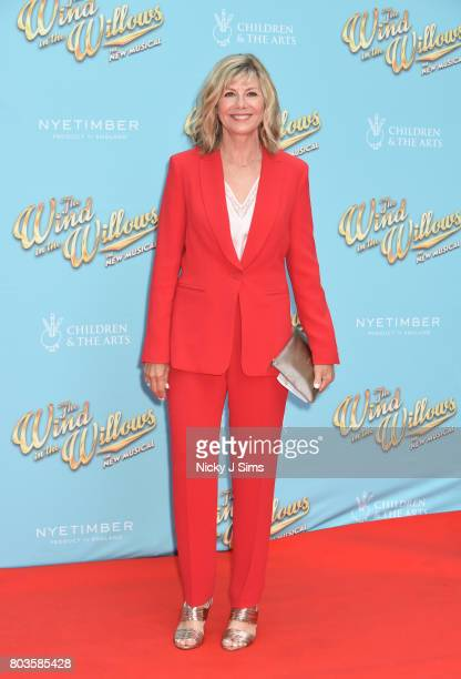 Glynis Barber attends the Gala performance of Wind In The Willows at London Palladium on June 29 2017 in London England