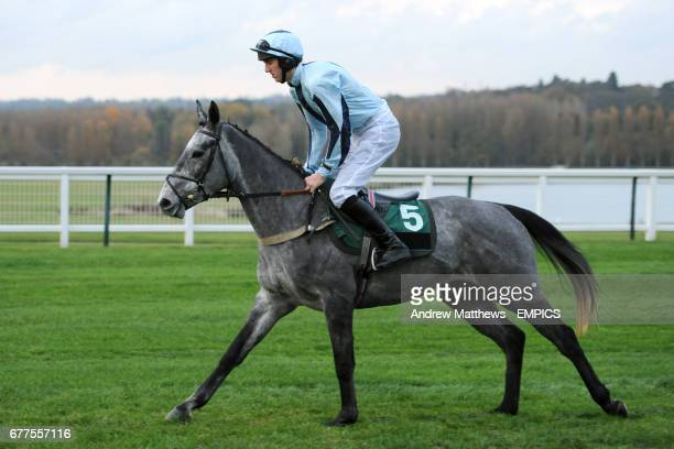 Go Annie ridden by Jack Doyle going to post for the British Stallion Studs Supporting British Racing EBF 'Junior' Fillies' Standard Open NH Flat Race