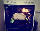 Go vegan. Promotion of vegetarianism, not to kill animals for meat. Live rabbit in the stove. Killing animals