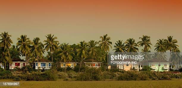 Goa resort in Jungle