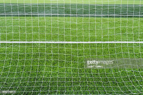 Goal net with green grass field.
