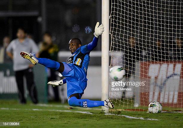 Goal of Flumiense by Fred against Ponte Preta during a match between Fluminense and Ponte Preta as part of the brazilian championship Serie A at Sao...