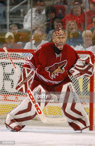 Goalie Brian Boucher of the Phoenix Coyotes protects the net from the Detroit Red Wings during the game at Glendale Arena on March 18 2004 in...