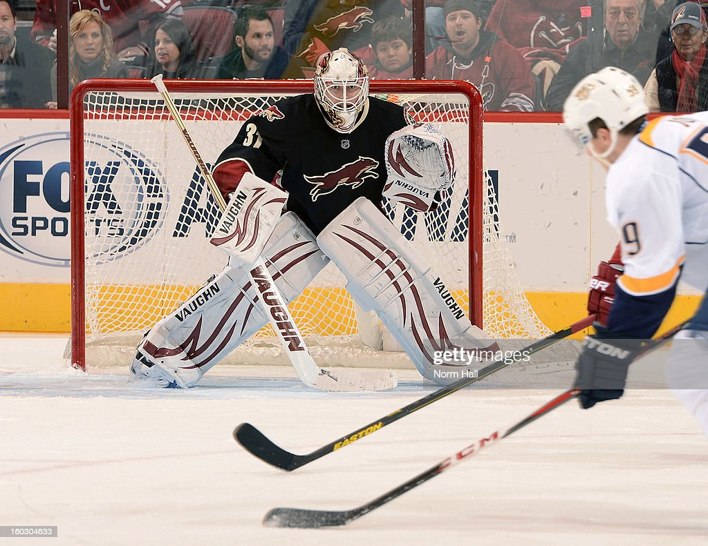 Goalie Chad Johnson #31 of the Phoenix Coyotes readies himself for the shot of <a gi-track='captionPersonalityLinkClicked' href=/galleries/search?phrase=Roman+Josi&family=editorial&specificpeople=4247871 ng-click='$event.stopPropagation()'>Roman Josi</a> #59 of the Nashville Predators at Jobing.com Arena on January 28, 2013 in Glendale, Arizona.