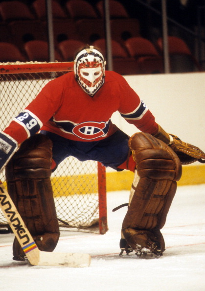"""The Game"" by Ken Dryden Essay Sample"