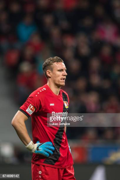 Goalkeeper Bernd Leno of Leverkusen reacts during the Bundesliga match between Bayer 04 Leverkusen and FC Schalke 04 at BayArena on April 28 2017 in...