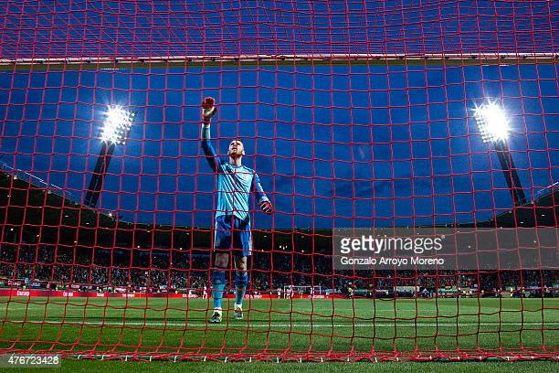 Goalkeeper David de Gea of Spain celebrates his teams opening goal during the international friendly match between Spain and Costa Rica at Reino de...