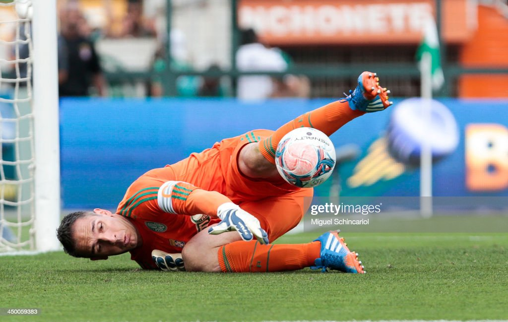 Goalkeeper Fernando Prass of Palmeiras during the match between Palmeiras and Boa Esporte for the Brazilian Championship Series B 2013 at Pacaembu Stadium on November 16, 2013 in Sao Paulo, Brazil.