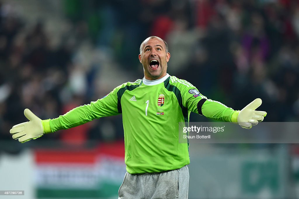 Goalkeeper Gabor Kiraly of Hungary celebrates as his team take a 1-0 lead during the UEFA EURO 2016 Qualifier Play-Off, second leg match between Hungary and Norway at Groupama Arena on November 15, 2015 in Budapest, Hungary.