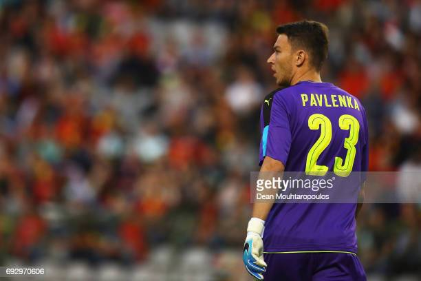 Goalkeeper Jiri Pavlenka of the Czech Republic in action during the International Friendly match between Belgium and Czech Republic at Stade Roi...