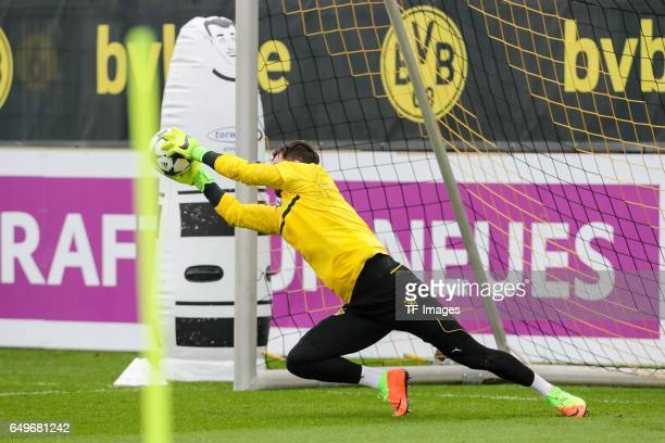Goalkeeper Roman Buerki of Borussia Dortmund in action prior the training of Borussia Dortmund ahead of the UEFA Champions League Round of 16 second...