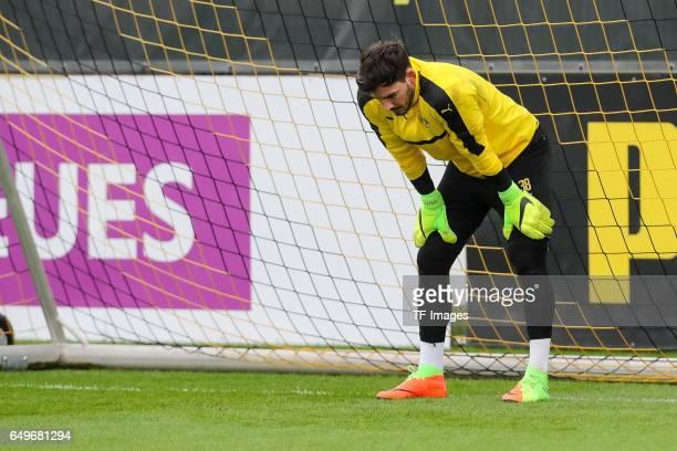 Goalkeeper Roman Weidenfeller of Borussia Dortmund looks on prior the training of Borussia Dortmund ahead of the UEFA Champions League Round of 16...