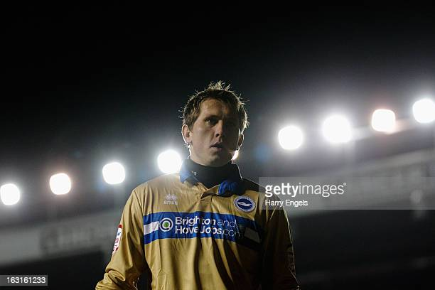 Goalkeeper Tomasz Kuszczak of Brighton Hove Albion looks on during the npower Championship match between Bristol City and Brighton Hove Albion at...