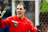 Goalkeeper yelling to players on field