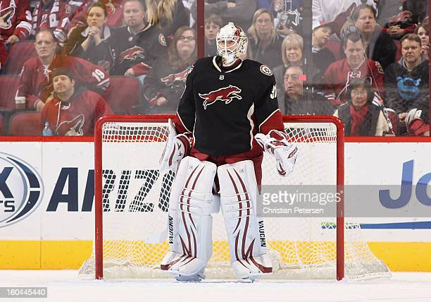 Goaltender Chad Johnson of the Phoenix Coyotes in action during the NHL game against the Nashville Predators at Jobingcom Arena on January 28 2013 in...