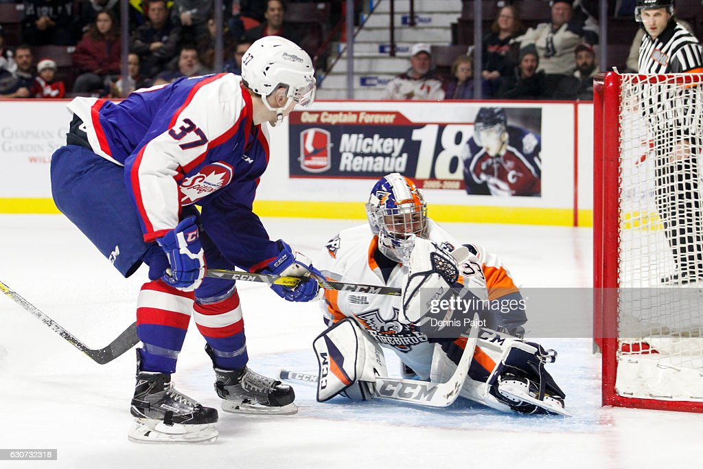 Goaltender Garrett Forrest #33 of the Flint Firebirds makes a save on a shot from Graham Knott #37 of the Windsor Spitfires on December 31, 2016 at the WFCU Centre in Windsor, Ontario, Canada.