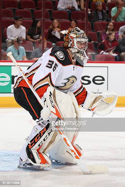 Goaltender John Gibson of the Anaheim Ducks in action during the preseason NHL game against Arizona Coyotes at Gila River Arena on October 1 2016 in...