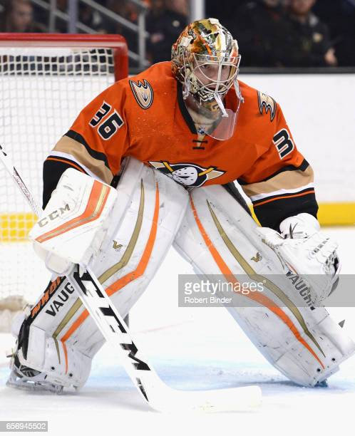 Goaltender John Gibson of the Anaheim Ducks plays in the game against the New York Rangers at Honda Center on March 16 2016 in Anaheim California