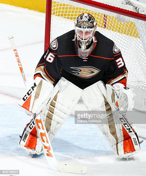 Goaltender John Gibson of the Anaheim Ducks stands in the crease during the game against the Carolina Hurricanes at Honda Center on December 7 2016...