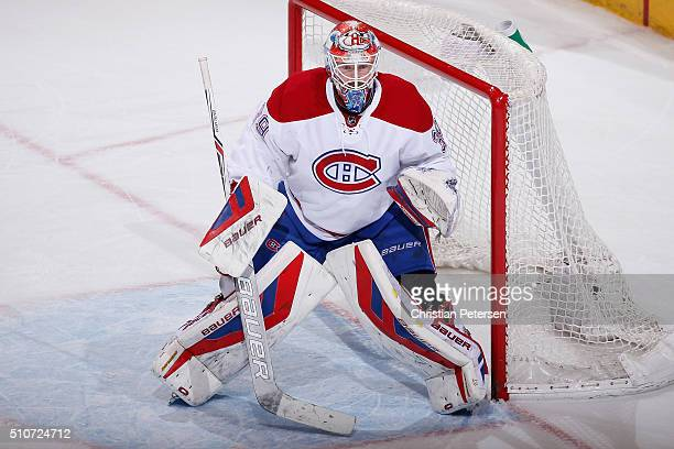 Goaltender Mike Condon of the Montreal Canadiens in action during the NHL game against the Arizona Coyotes at Gila River Arena on February 15 2016 in...