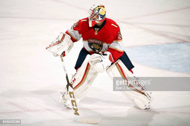Goaltender Roberto Luongo of the Florida Panthers defends the net against the Calgary Flames at the BBT Center on February 24 2017 in Sunrise Florida