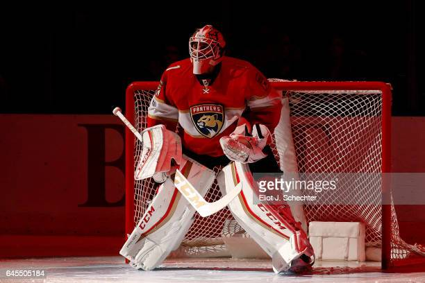 Goaltender Roberto Luongo of the Florida Panthers in front of the net prior to the start of the game against the Calgary Flames at the BBT Center on...