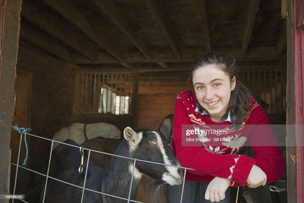 A goat farm. A young girl leaning on the barrier of the goat shed, with a group of goats behind her. : Stock Photo