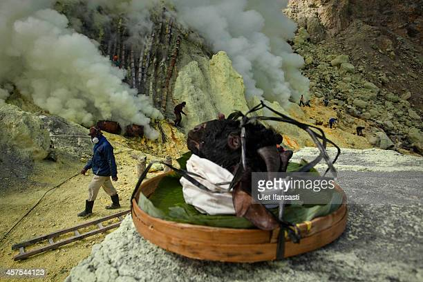 A goat head is seen as perparations are made for a burial in the crater as part of an annual offering ceremony on the Ijen volcano on December 17...