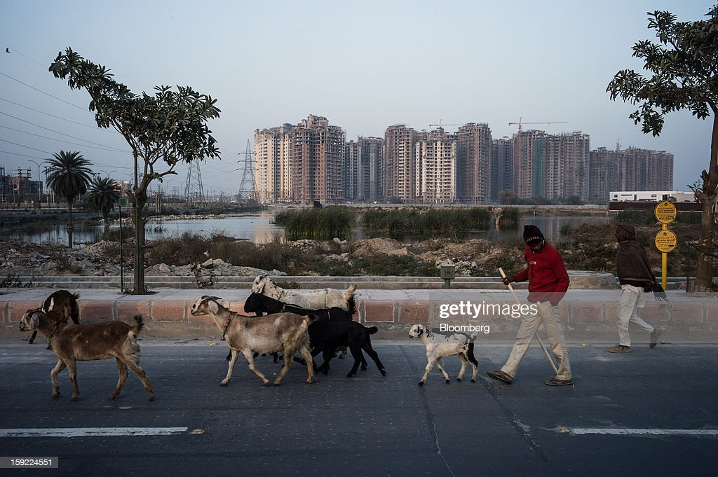 A goat herder walks with goats in front of apartment blocks under construction in Noida, Uttar Pradesh, India, on Wednesday, Jan. 9, 2013. India's Finance Ministry predicts GDP growth of as little as 5.7 percent in the year to March 31, the least in a decade. Photographer: Sanjit Das/Bloomberg via Getty Images