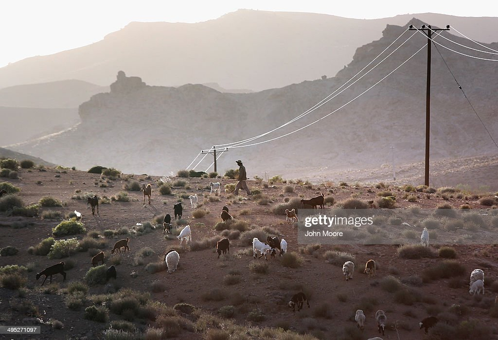 Goats seek out grazing material at sunset on May 30, 2014 near the village of Nasrabad, in central Iran. This week marks the 25th anniversary of the death and continued legacy of the Ayatollah Khomeini, the father of Iran's Islamic Revolution, only the latest chapter of Persia's long history.