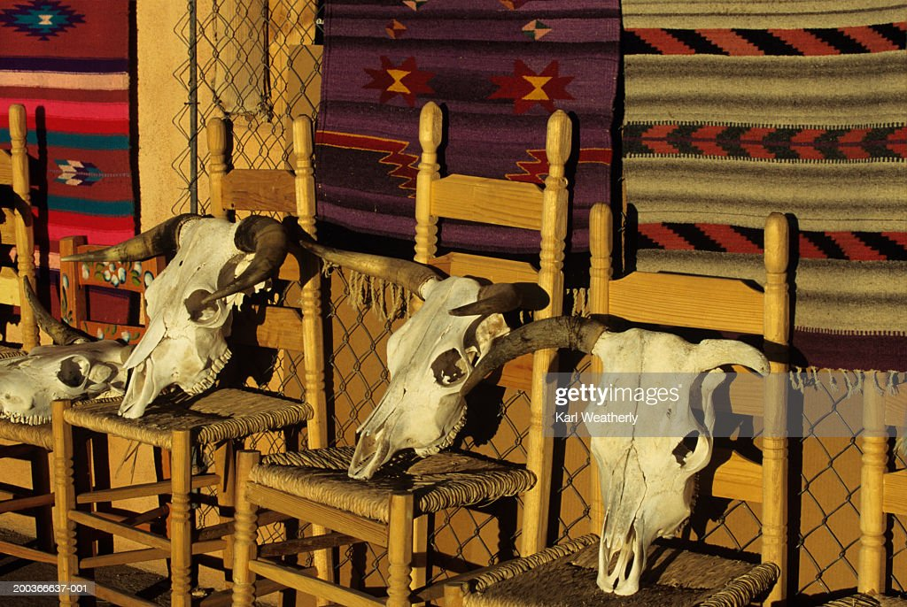 Goats skulls on chairs at stall, New Mexico, USA : Stock-Foto