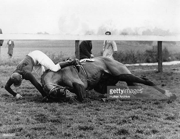 R Godden seen here taking a tumble on 'Douglas Dhai' during the Virginia Water steeplechase at Windsor