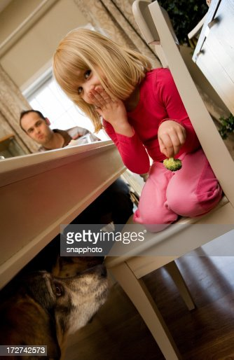 Going to the Dogs : Stock Photo