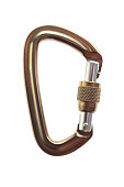 Gold carabiner on a white background.
