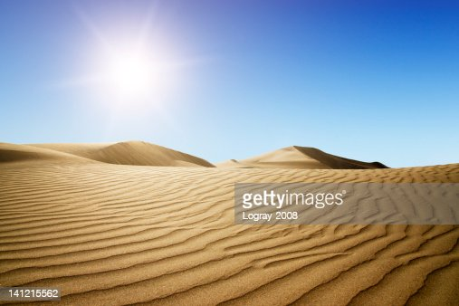 Gold desert into the sunset. : Stock Photo
