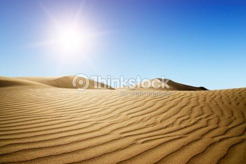 Gold desert into the sunset. : Stock Photo