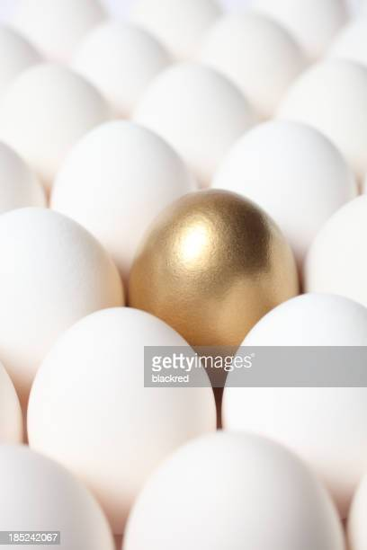 Gold Egg Among Many White Eggs