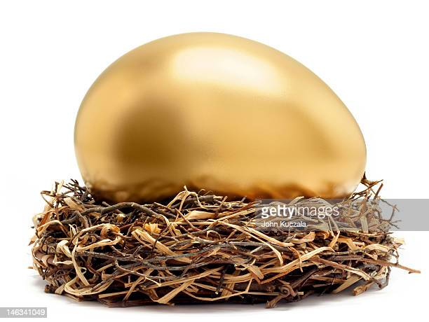 gold egg in nest