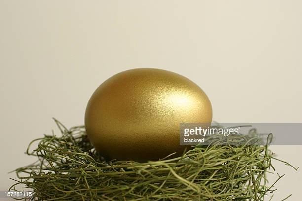 Gold Egg on a Nest