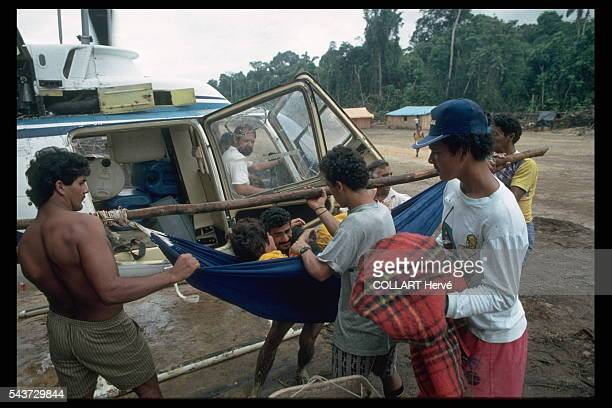 Gold miners invading Yanomami territory bring malaria with them The disease kills the Yanomami but miners who fall sick are evacuated to Boa Vista