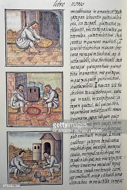 Gold processing after the Spanish conquest page from the Florentine Codex bilingual version in Spanish and Nahuatl General History of the Things of...