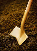 Gold shovel in dirt.