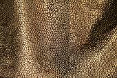 silver gold skin animal alien dinosaur reptile monster pattern surface leather