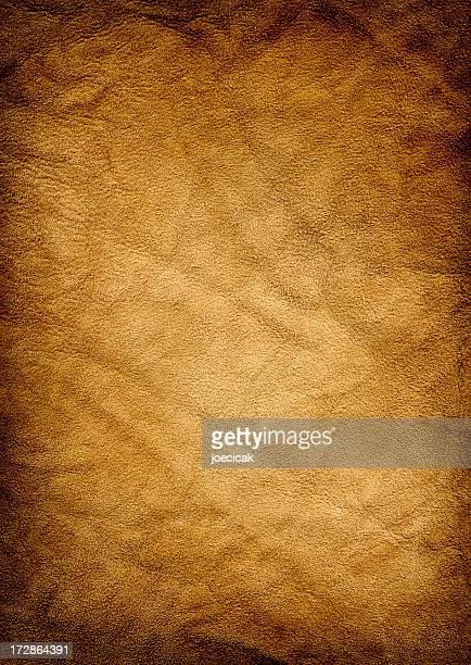 Gold Suede Background XXL